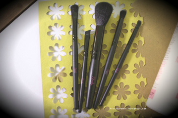 Sleek Makeu Brushes review